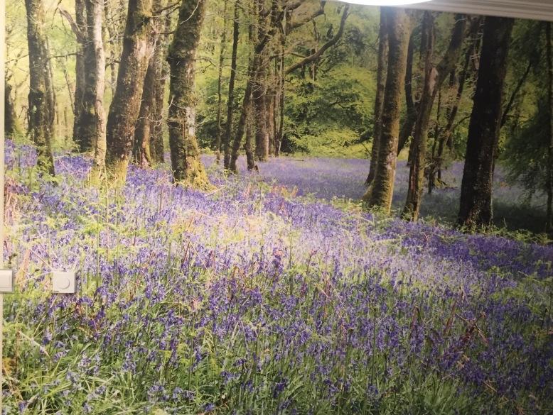 forest mural wickham